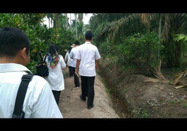 Jelang HKI, Disbunak Persiapan Pendampingan Petani Kopi